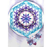 Levender Mandala Photographic Print
