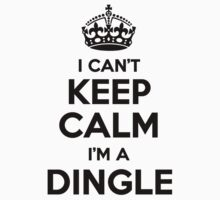 I cant keep calm Im a DINGLE by icant