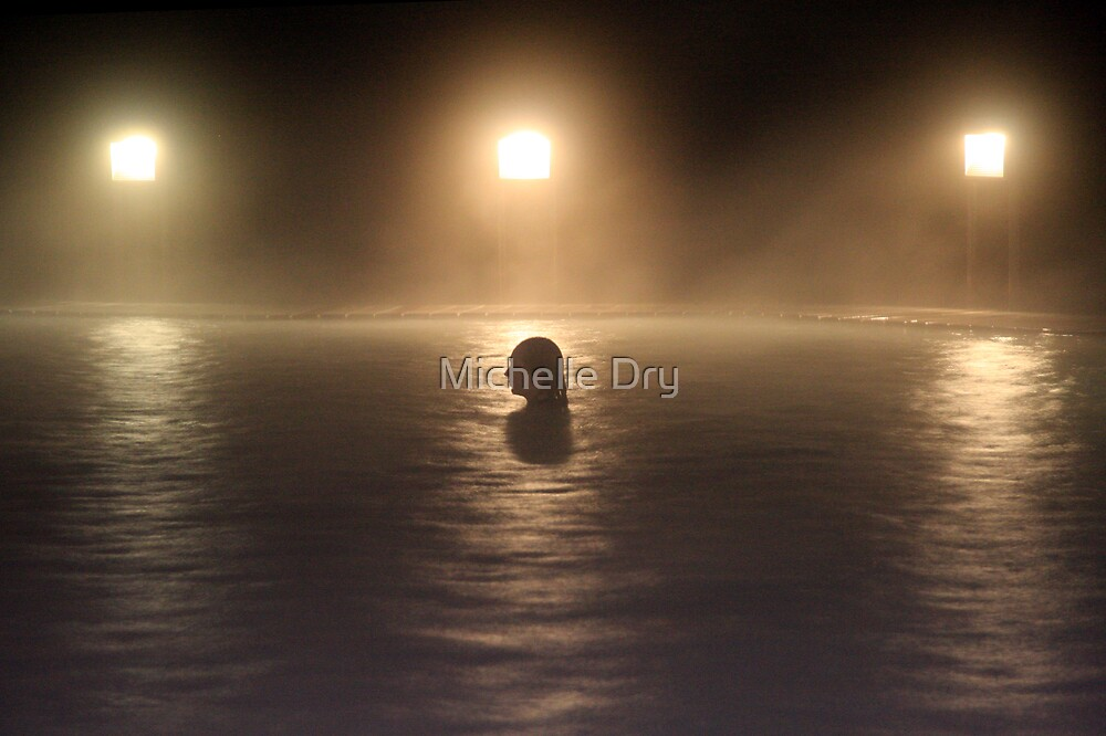 Steam by Michelle Dry