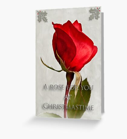 One red rose holiday card Greeting Card