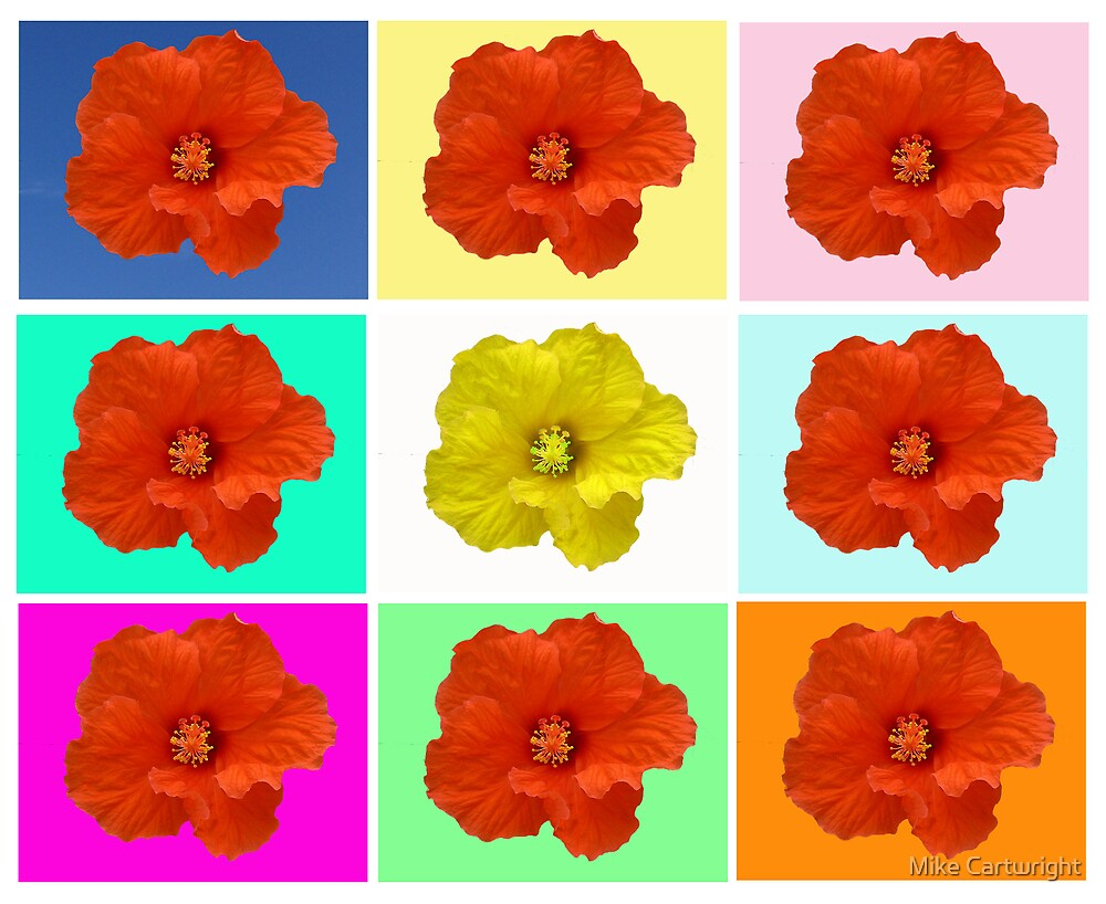 Flower Warhol by Mike Cartwright