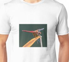 Dragonfly. Unisex T-Shirt