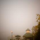 Foggy Overlook by doorfrontphotos