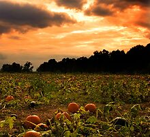 Pumpkin Skies by Keeli