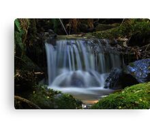 Cement creek 1 Canvas Print