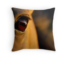 the golden light of the setting sun Throw Pillow
