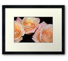 Enchanted Love Framed Print