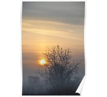 Winter morn. Poster