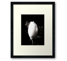 White Magnolia Bud Framed Print