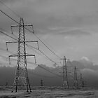 Pylons by Hilary Robertshaw