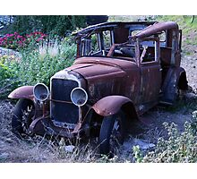 sleeping buick Photographic Print