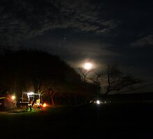 Bushveld christmas nights  by bushwakka