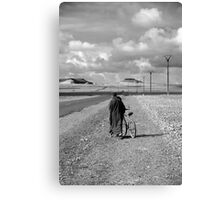 milk run? Canvas Print