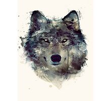 Water Paint Wolf Photographic Print
