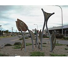 Fish Sculptures, Ulladulla, New South Wales, Australia 2011 Photographic Print