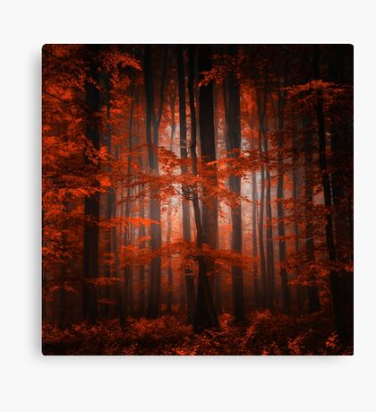 Red Parallel Universe Canvas Print