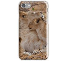 Lioness With Her Cubs iPhone Case/Skin