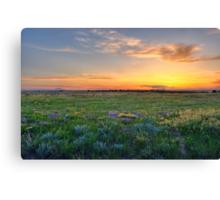 Lavender Sunset Surprise Canvas Print