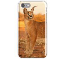 Caracal 4 iPhone Case/Skin
