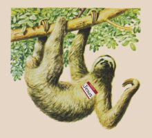 A Sloth Named Jesus by AustinHolton