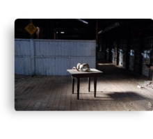 Naked Shed Canvas Print