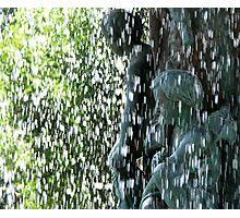 Rain Watchers Photographic Print