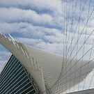 The Milwaukee Art Museum by Kate Purdy
