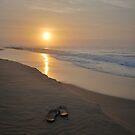 First Light - Croajingolong National Park 2014 by salsbells69