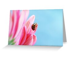 ~ Journeys - big and small ~ Greeting Card