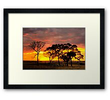 Sunset over the trees. Framed Print