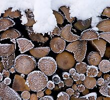 Iced Pile by Walter Quirtmair