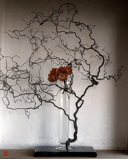 Ikebana-072 by Baiko