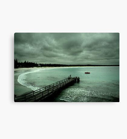 Diving Deep Canvas Print