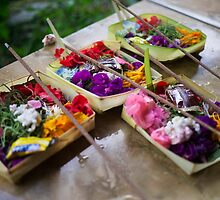 Canang Sari - Balinese Offerings by jaymephoto