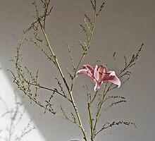 Ikebana-043 by Baiko