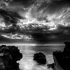 watermans reef by alistair mcbride