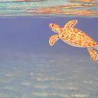 """""""Surfacing"""" by Carole Elliott"""