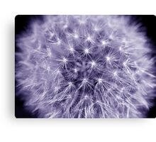 Perfect Puff Canvas Print
