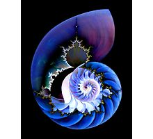 Mandel's Spiral Photographic Print
