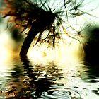 Dandelion Fantasy by webgrrl