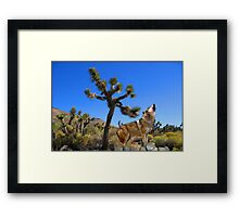 NA-666-Call of the Wild Framed Print