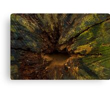 The colours of decay. Canvas Print