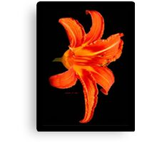 ORANGE DAY LILLY Canvas Print