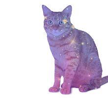 CAT GALAXY by nick5509