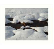Winter scene #2 Art Print