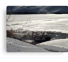 Winter scene #3 Canvas Print