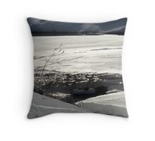 Winter scene #3 Throw Pillow