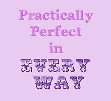 Practically Perfect by The Foolish Worlock