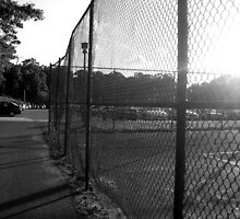 Near the Tennis Courts at SUNY Old Westbury by saidalauren