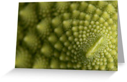 a close look at italian broccoli by dominiquelandau